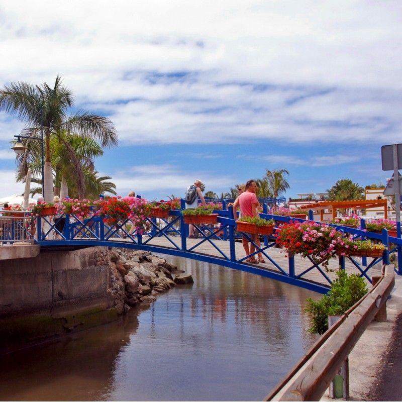 Puerto de Mogán Market with Bus