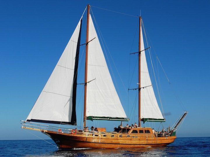 Aphrodite Sail Boat
